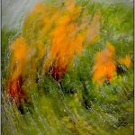 AUTUMN WOODLAND ABSTRACT (Deliberate Camera Movement -DCM) by Terry Mann